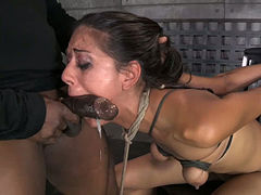 Hot and slim chick is brutally bound in strict strappado and gets banged hard