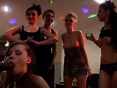 Wild New Year college orgy 3/Melody, Megan, Mikaela, Tracy, Danna, Keeley, Phoebe, Stephanie, Heidi, Gillian, Selena, Josie