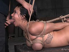 Face fucking a rope bound girl until she gags on the dick