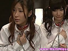 Japanese amateur schoolgirls get punished